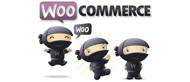 pourquoi-woocommerce-mnstd